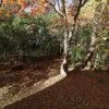16975 Jackson Trail, Lakeville, MN 55044 (17)