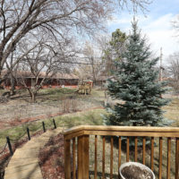 1055 Lowell Drive, Apple Valley (51)