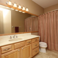 1291 Spring Green Lane, Burnsville, MN 55306 (51)